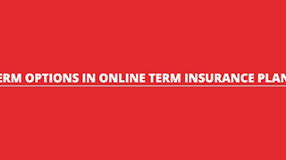 TERM OPTIONS IN ONLINE TERM INSURANCE PLANS